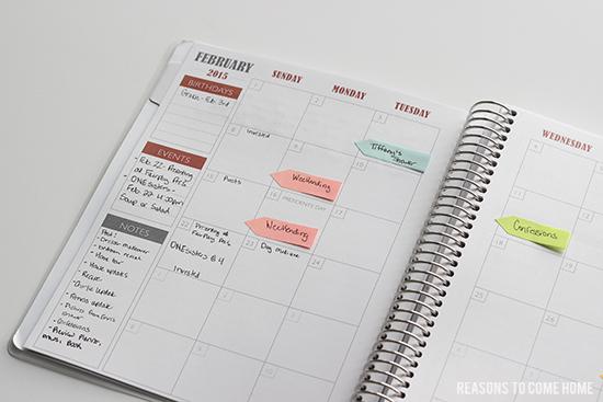 Plum Paper Planner 10