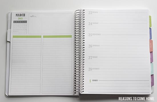 Plum Paper Planner 12