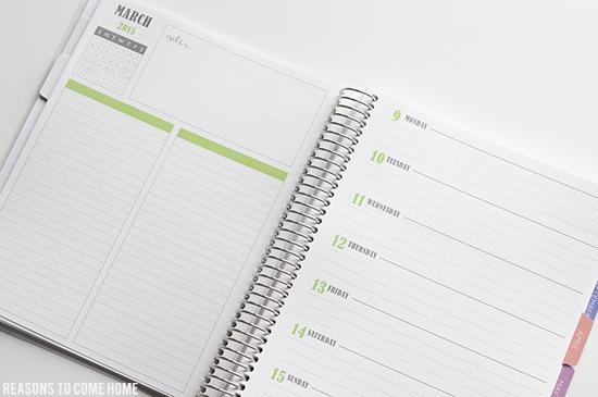 Plum Paper Planner 14