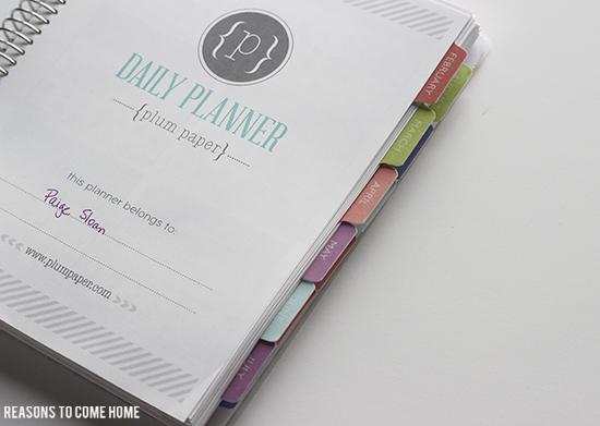 Plum Paper Planner 5