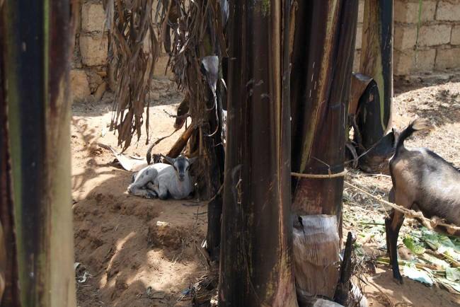 Rwanda-2015-Day-7-17