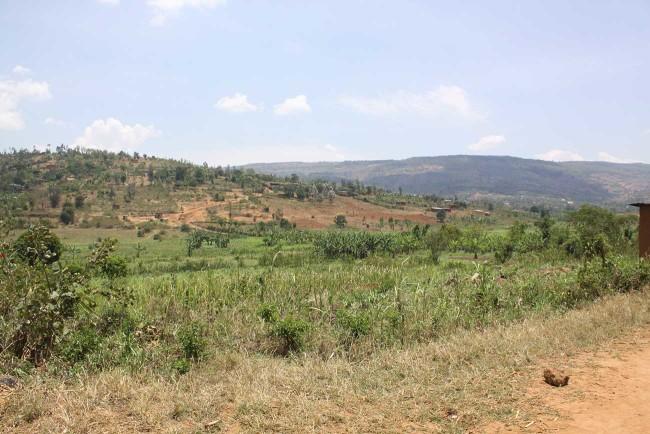 Rwanda-2015-Day-7-36