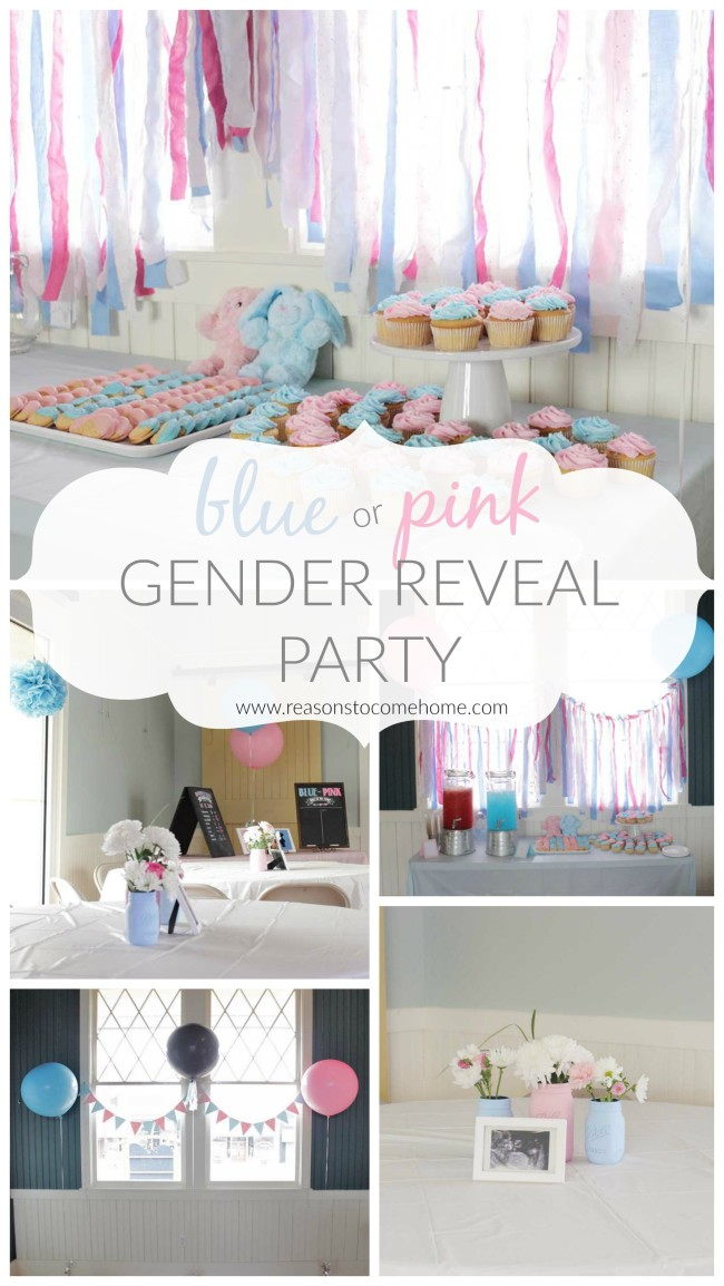 Gender Reveal Cover