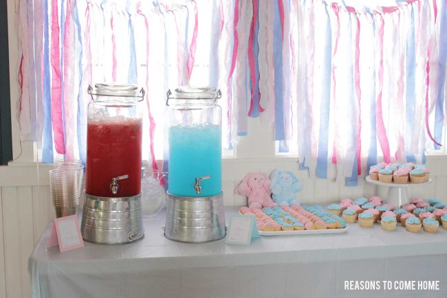 Gender-Reveal-Party-16