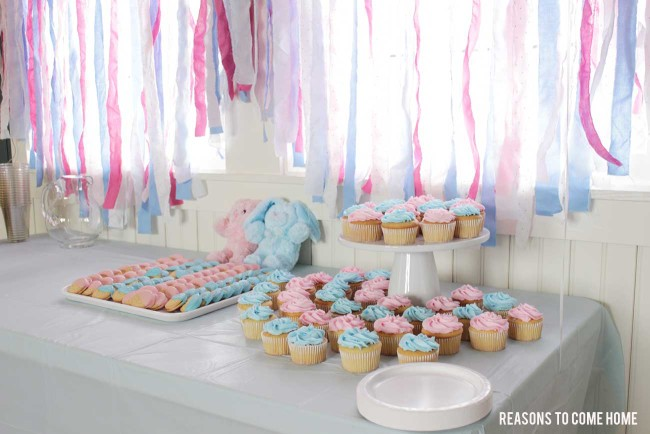 Gender-Reveal-Party-4